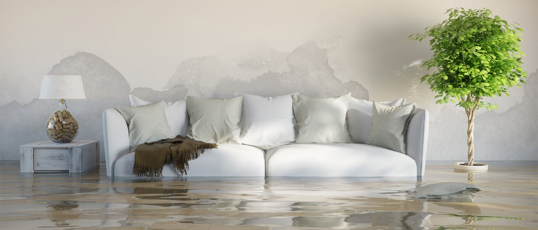 Wet plasterboard: repair or replace?